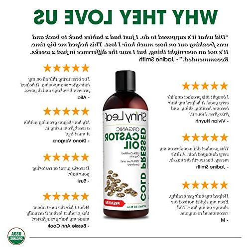 Organic Oil For Hair and Eyelashes, Free, Hair & Fall, Thickens Natural Moisturizer