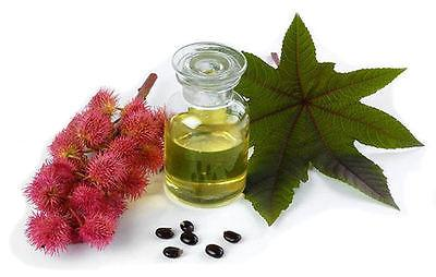 Organic Castor Oil | 4oz From 100% Pure | Cold Pressed