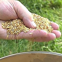 vole and gopher repellent granules 6 lb